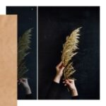 Obróbka zdjęcia w telefonie – Lightroom mobile